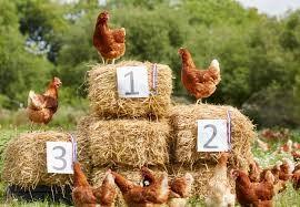 Етикетирането като пазарно-ориентирана мярка за подобряване благосъстоянието на животните